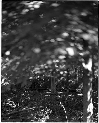 """Danielle Scruggs, """"Untitled"""", 2013. Archival pigment print, 7 1/2x6"""""""