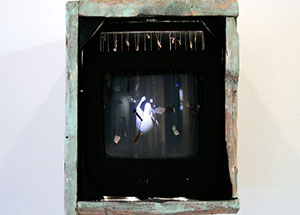 """""""The Frustration of Expression"""", curated by Dorota Czerner, on view November 13 - December 23, 2010"""