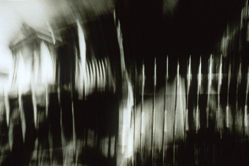 """Allison Petit, Snapdragons #7, dye sublimation print, 4.5""""x6.5"""", 1997"""