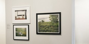 Selections from the Permanent Print Collection