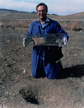 "Joann Brennan, ""Biologist Paul Nash investigates ways to humanely reduce prairie dog populations, NWRC, Fort Collins, CO"", 2000, C-print"