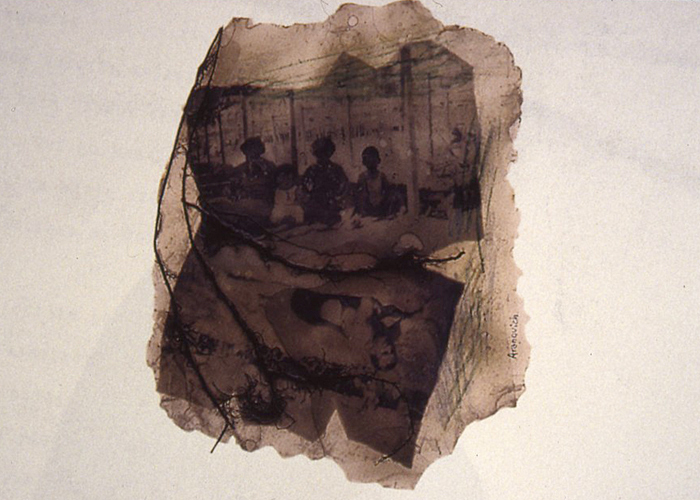 Untitled from The Series of Memories, 1997, resin with photocopies and natural materials