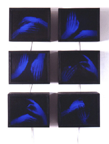 "David Webster, ""The Six Sacred Positions of Buddha"", 1995 X-ray, film, wood, and plexi"
