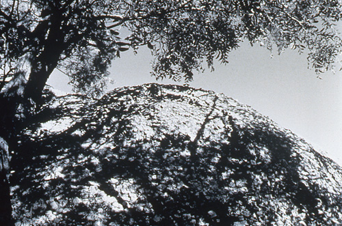 """Elaine Querry, Cloud Rock, Dragoon, AZ, toned gsp, 1995, 11x14"""""""