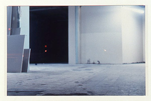 """""""At A Remove"""", curated by William Stover, November 11 – December 20, 2000"""