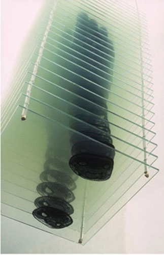 "Justine Cooper, ""Reach"", 2000, MRI scans, film, plexi glass, laminate, 17 ½ x 8 x 8"", Courtesy Julie Saul Gallery, NYC"