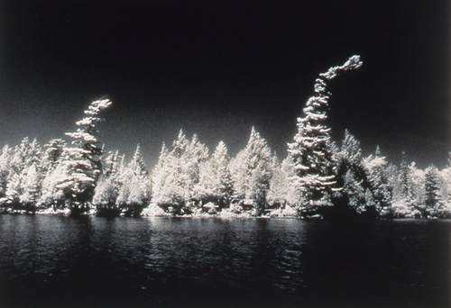 Kathleen Larkin, After The Storm, infared gsp, 1995, 14x11""