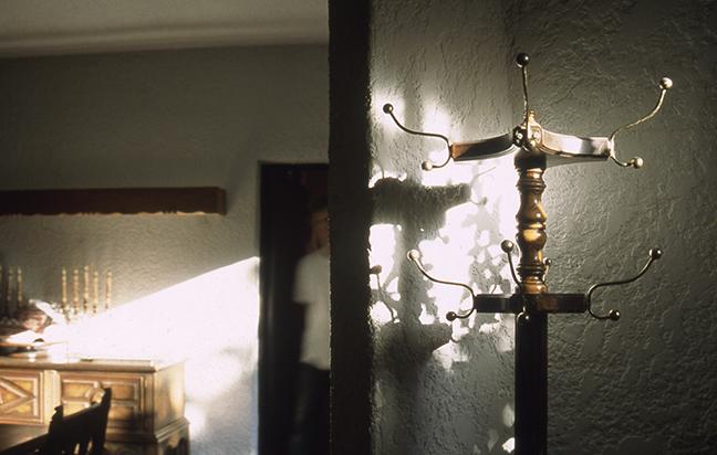 """Laura Calfee, """"Louis"""", 1996, Ilfochrome."""