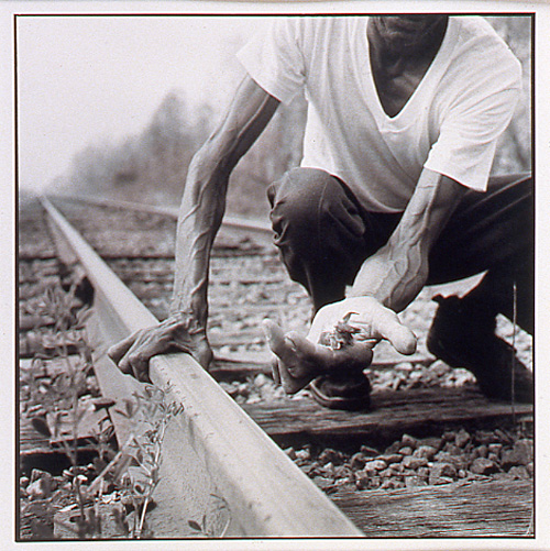 Tracks, 1995, gelatin silver print
