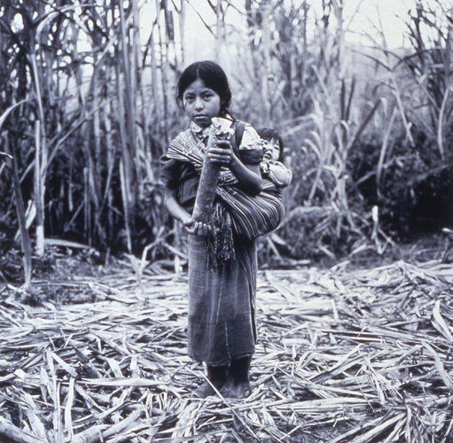 A Young Ixan Girl, CPR of the Sierra, Quiche, Guatemala, 1993, Gelatin Silver Print, 14x14""