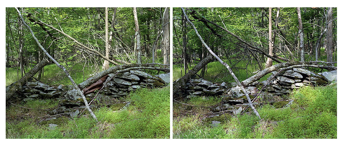 "Dawit L. Petros, ""Untitled (Boundary Marker)"", from ""Mimesis (The Woodstock Series)"", 2007, c-print, 20x48"" diptych"