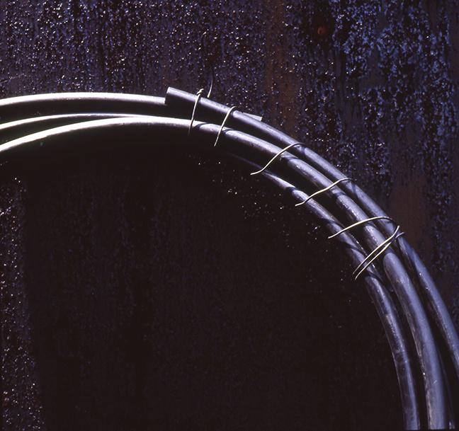 "Rebecca Stockholm, ""Bound"", 1998, Cibachrome, 15x15""."