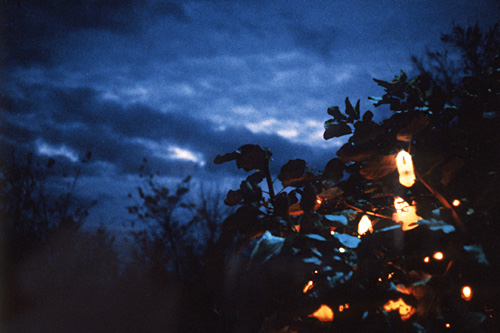 "Susan Fowler, Gallery Wolf Hour, Hudson Valley, Ektacolor, 5x7"", 1997"