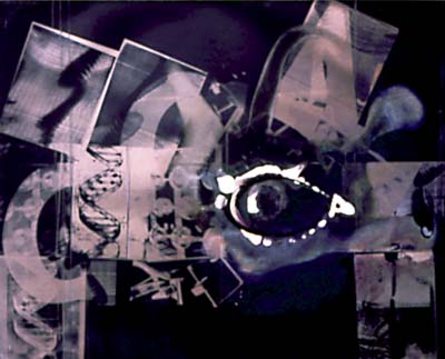 "Susan Rankaitis, ""#23 TACG"" from the Transformation series, 1996, unique combined media monoprints  on photographic paper, each 16x20"", Courtesy Robert Mann Gallery, NYC"