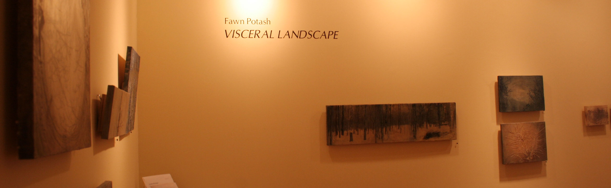 "Fawn Potash ""Visceral Landscape"""