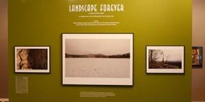 Landscape Forever Banner