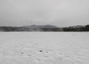 Landscape Forever, Dion Ogust, January 9 - February 28, 2010
