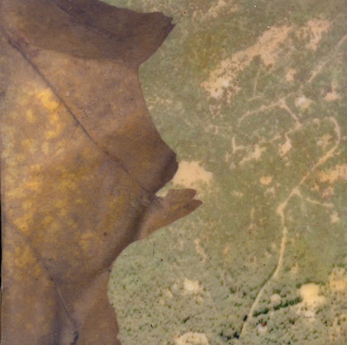 "Fawn Potash, ""CQ Sketches for California Quarry, Leaf and View from Space"", 2009, digital prints with encaustic, oil, and pigment, 5x5"""