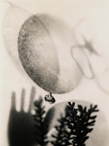 "James Reeder, ""Elusive"", gelatin silver print toned w/ tea"
