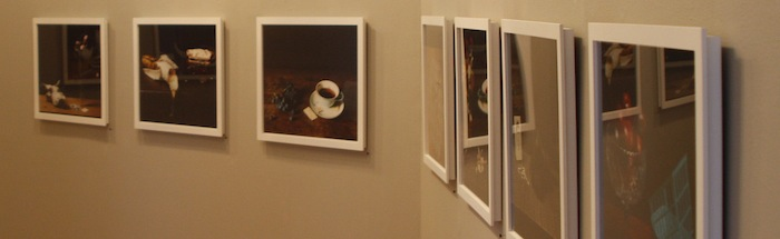 "Installation View of ""Vanitas"", January 9 - February 28, 2010"