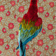 """Claire Rosen, """"Green Wing Macaw, No. 7301"""", 2012, archival pigment print, 25.5 x 17""""."""