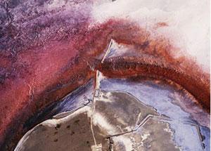 Managing Eden, curated by Kate Menconeri & Ariel Shanberg, August 16 - October 12, 2003