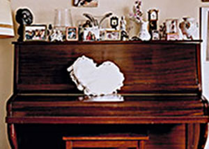 """Family Album"", curated by Kate Menconeri & Ariel Shanberg, CPW, June 24 - August 20, 2006"