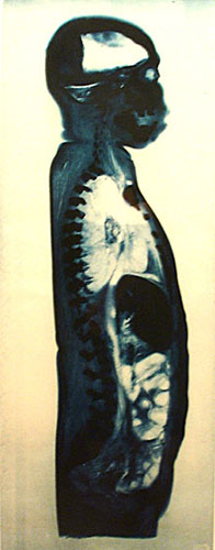 Untitled (male), modern cyanotype from original photogram, 1920-1930s, edition of 50, Courtesy Wintern Works on Paper, NYC