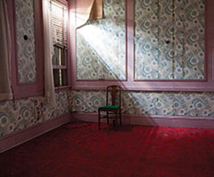 """""""Photography Now 2013"""" juried by Kira Pollack, April 13 - June 16, 2013"""